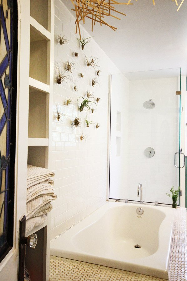 vertical-bathroomp-plants
